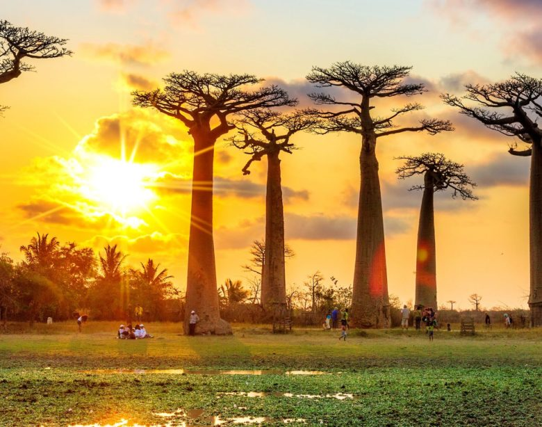 Мадагаскар достопримечательности