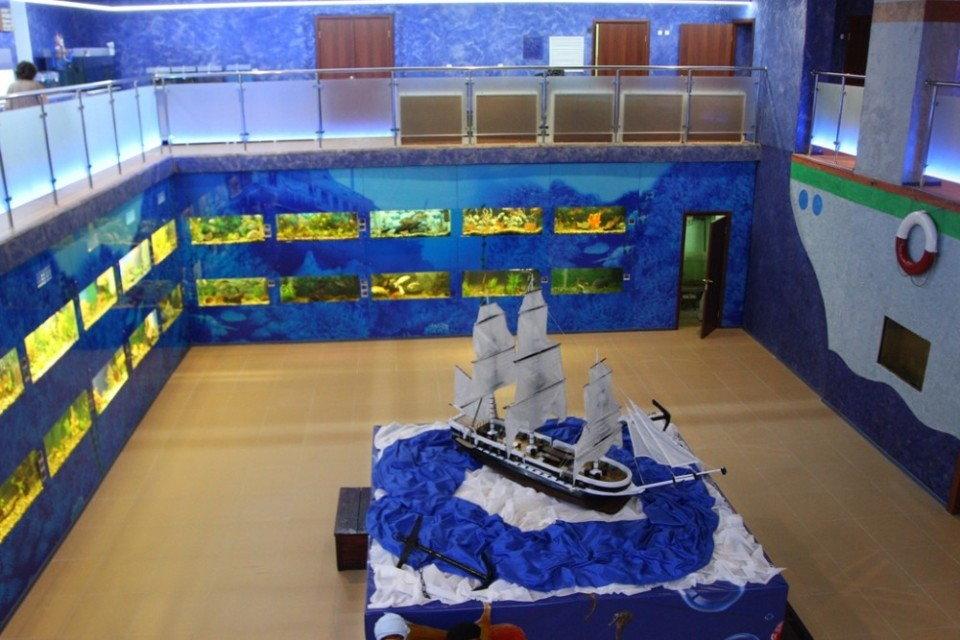 Челябинский океанариум